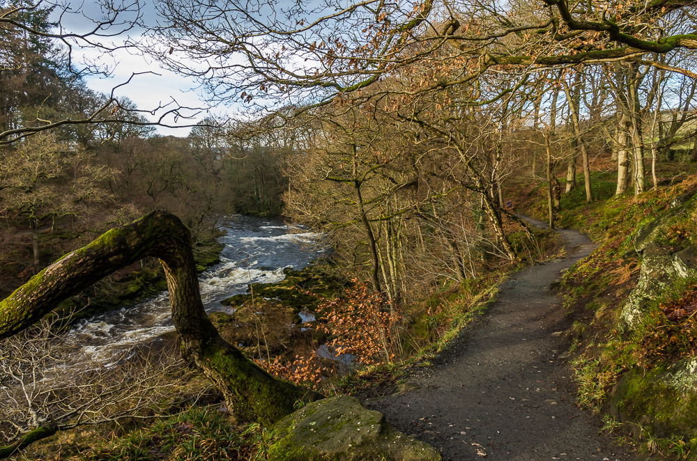 Footpath above The Strid