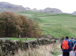 Near Scaleber on Mid Craven Fault