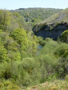 Cressbrook Dale from the Monsal Trail
