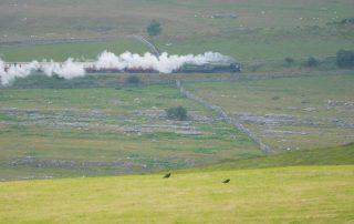 Train Approaching Ribblehead © A Shaw UWFS