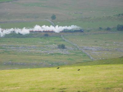 Train Approaching Ribblehead © A Shaw UWFS