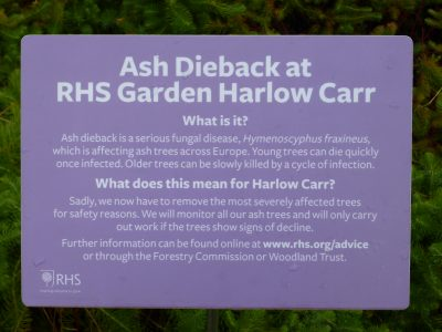 Figure 5 Public information notice at RHS Harlow Carr